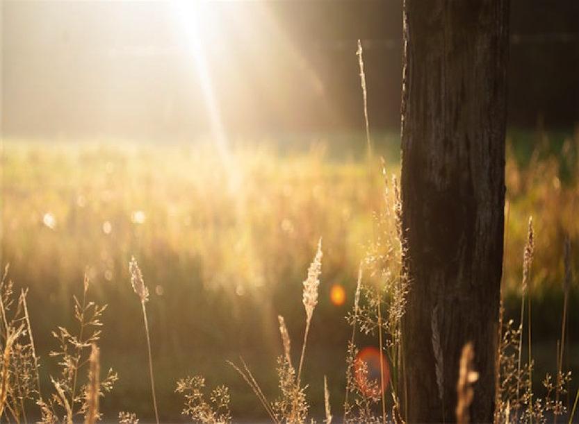 過去にすがるのではなく、未来に逃げるのでもなく「今を生きる」
