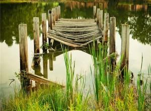 人生に道標がないからこそ生き方に迷う 不安が「違い」を否定する