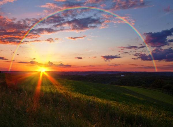幸せになる方法 心豊かに生きるための4つの行動習慣