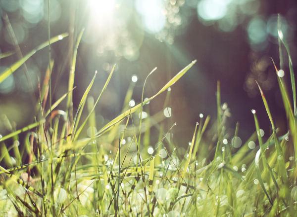 「毎日楽しくない」を「最高の人生」に変える丁寧な暮らし方