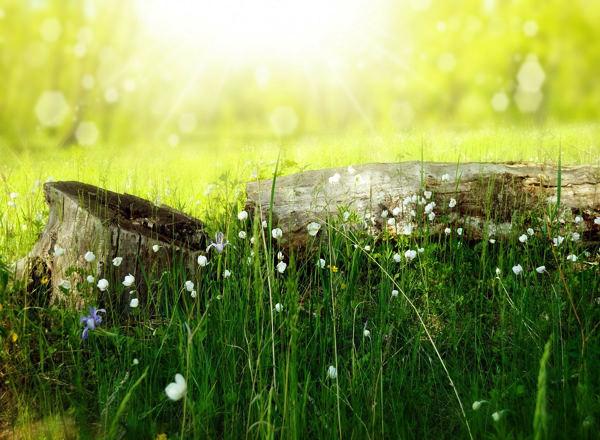 一度きりの人生を後悔なく生きる 人生を楽しむ心の在り方